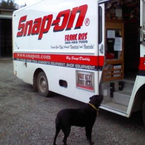 My lab Peggy Loves it when the Snap-on truck stops by work----treats!!!!