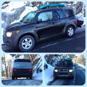 Element with Thule Rack & 684 Thule Terrapin, in snow.